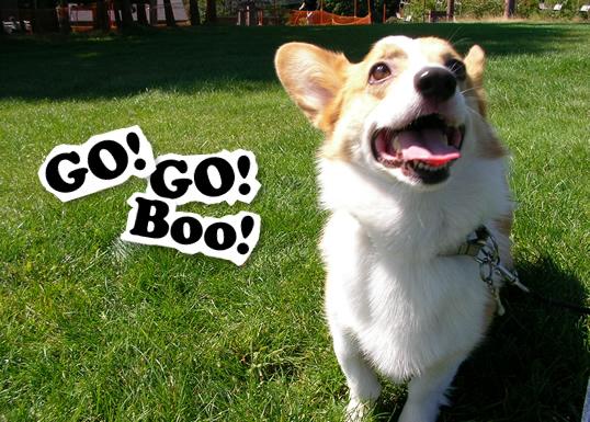 GO! GO! Boo!