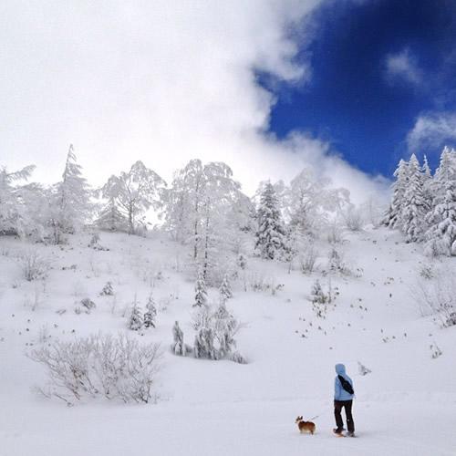 雪山 20121231